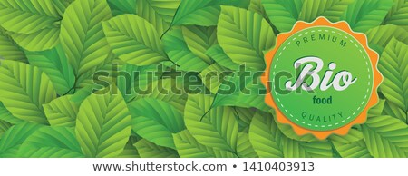 Stockfoto: Bio Food Label Green Beech Leaves Header
