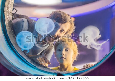 Papa fils regarder méduse bleu aquarium Photo stock © galitskaya