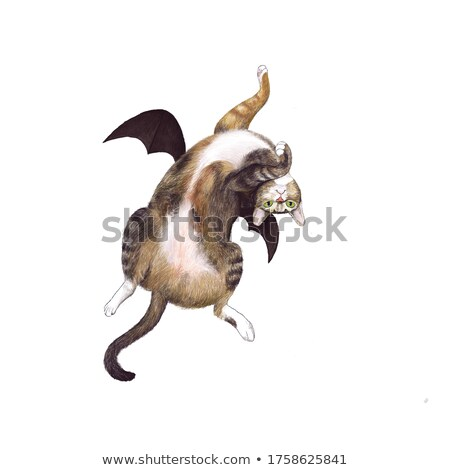 Bat cat flying cartoon hand drawn style Stock photo © amaomam