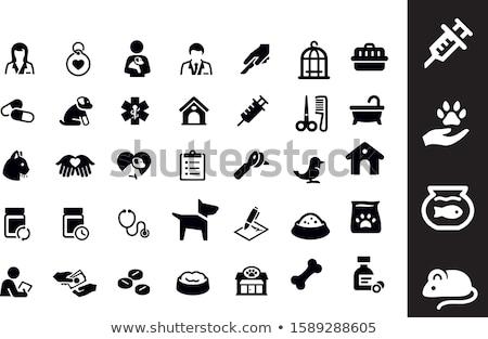állatorvos ikon vektor skicc illusztráció felirat Stock fotó © pikepicture