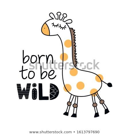 Nacido funny jirafa carácter texto Foto stock © Zsuskaa