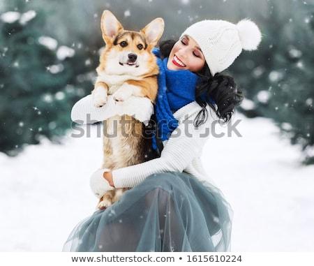 Elegancki dziewczyna długie włosy spaceru psa wektora Zdjęcia stock © ayaxmr