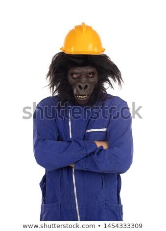 Goryl pracownika ubrania żółty kask odizolowany Zdjęcia stock © Gelpi