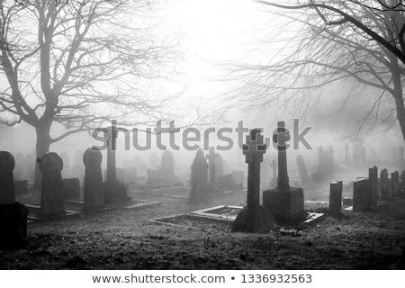 familie · rouw · graf · begraafplaats · kerkhof · bloemen - stockfoto © morrbyte