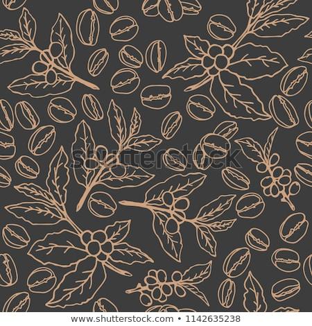 Sem costura grãos de café grão de café vetor papel de parede padrão Foto stock © Hermione