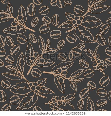 Naadloos koffiebonen koffieboon vector behang patroon Stockfoto © Hermione
