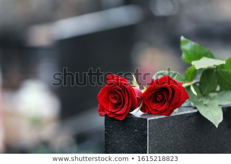 Tombstone with flowers Stock photo © Elenarts