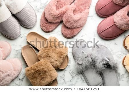 Pluizig slippers paar bruin licht grijs Stockfoto © prill
