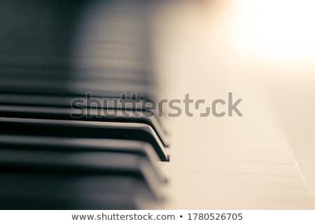 Abstrakten Musikinstrumente Musik voll Stock foto © ElaK