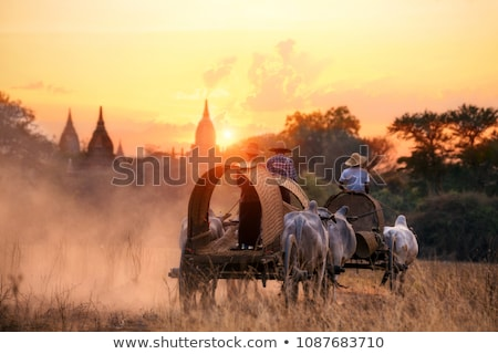 Landscape in Myanmar Stock photo © bbbar