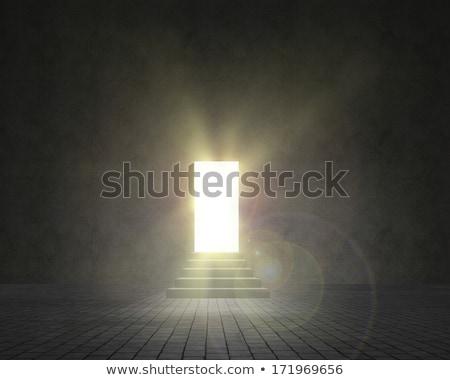 лестницы · двери · свет · стены · интерьер · темно - Сток-фото © ajlber