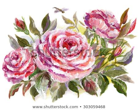 vibrante · aumentó · brote · Bush · Rose · Red · flor - foto stock © sineok
