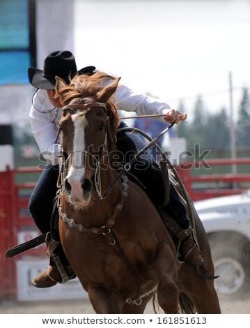 cowboy · pistolet · hat · zewnątrz · ranczo · ognia - zdjęcia stock © riedjal