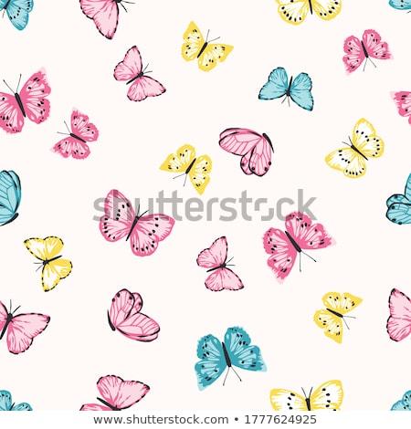 Absztrakt virágmintás pillangók terv körül lomb Stock fotó © kittasgraphics
