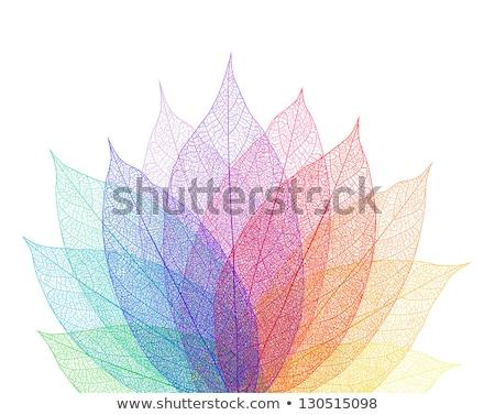 automne · ciel · vecteur · bannière · laisse · forêt - photo stock © beholdereye