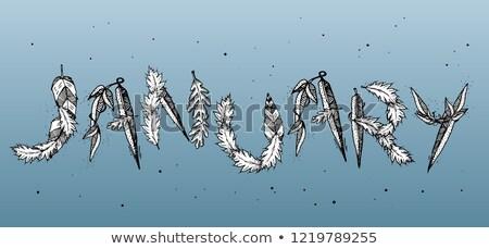 Tipográfia retró stílus hópelyhek címke buli terv Stock fotó © maxmitzu