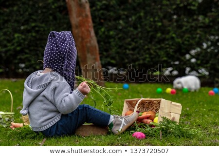 bebek · arama · çim · küçük · güneş · bahar - stok fotoğraf © DNF-Style