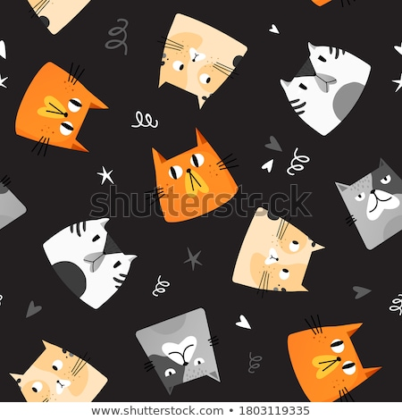Cute fat cat Stock photo © phakimata
