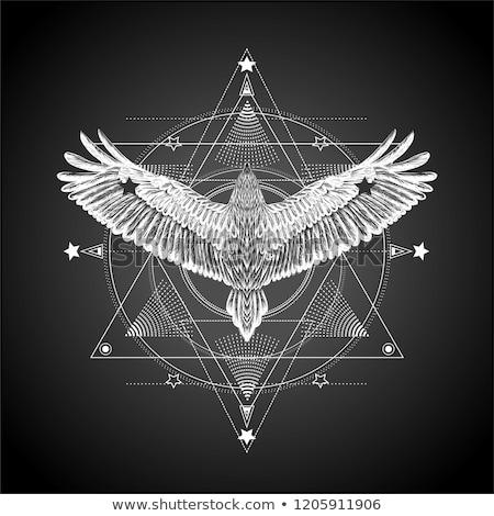 Astrology hand-drawn background Stock photo © m_pavlov