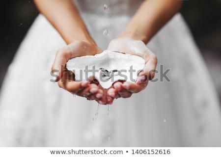 bruiden · handen · tonen - stockfoto © paha_l