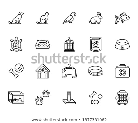 Cat care pet shop flat thin line icons Stock photo © vectorikart