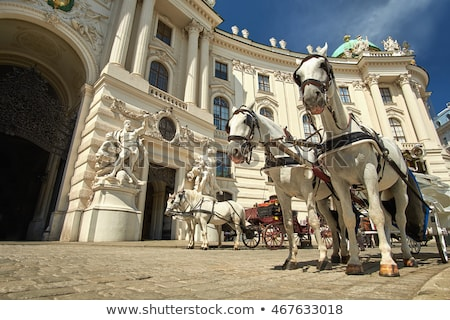 horse driven carriage at hofburg palace vienna austria stock photo © vladacanon