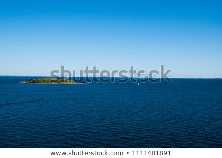 Windmills in a row in the Baltic sea Stock photo © vladacanon