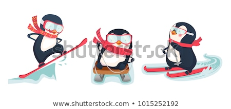 penguin with snowboard Stock photo © adrenalina