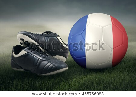 Football France 2016 #2 Stock photo © Oakozhan