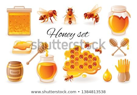 Honingraat honing toast witte hout achtergrond Stockfoto © OleksandrO