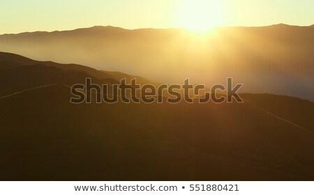 農村 · 道路 · スペイン · マラガ - ストックフォト © amok
