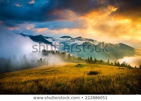 Berg najaar landschap dorp hooiberg Stockfoto © Kotenko