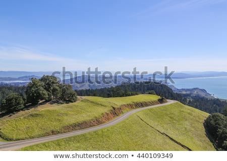 San Francisco linha do horizonte ponte ilha anjo Foto stock © yhelfman