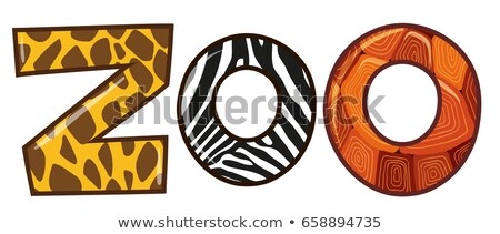 Word zoo with different animal skin texture Stock photo © bluering