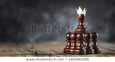 ambitieus · pion · leiderschap · reusachtig · witte · houten - stockfoto © Fisher