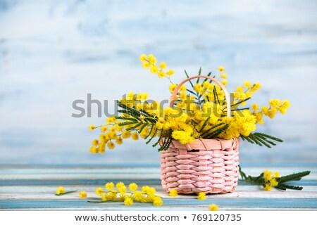Citromsárga virágok szív alak zöld Stock fotó © orensila