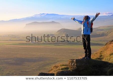 Tourist standing on the top of the canyon in Iceland Stock photo © Kotenko