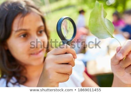 aprender · hebraico · lupa · papel · velho · vertical - foto stock © tashatuvango