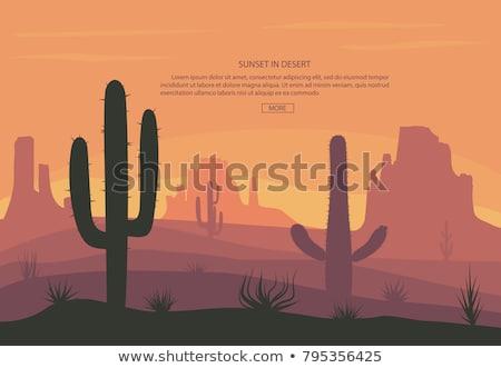 Stock fotó: Hegyek · sivatag · tájkép · naplemente · ágyú · jelenet
