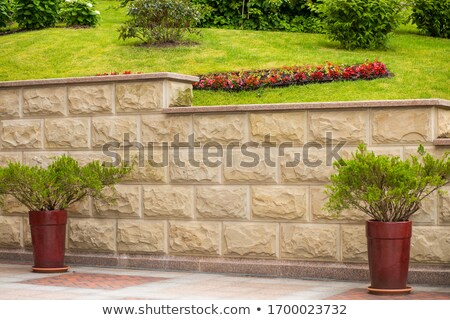 песчаник саду стены здании строительство дизайна Сток-фото © Zerbor