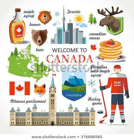 Торонто Stick Skyline город Онтарио Канада Сток-фото © blamb