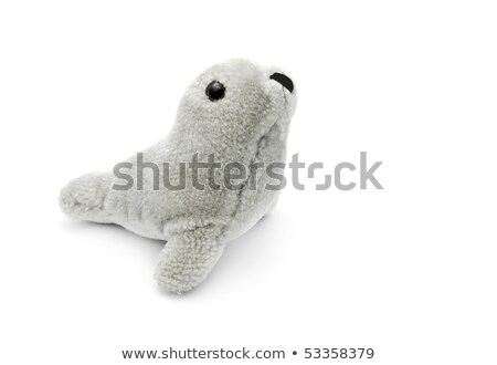 Peluche sceau blanche Photo stock © FOKA