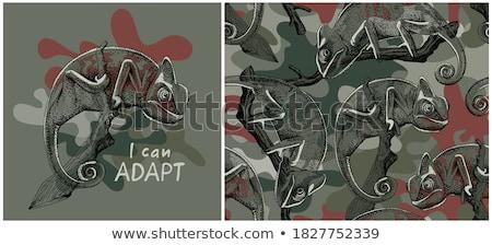 forêt · vecteur · graphique · design · graphique - photo stock © smith1979