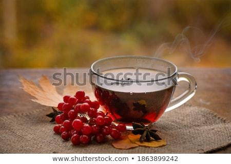 kupa · sıcak · çay · kırmızı · fincan · sonbahar - stok fotoğraf © Illia