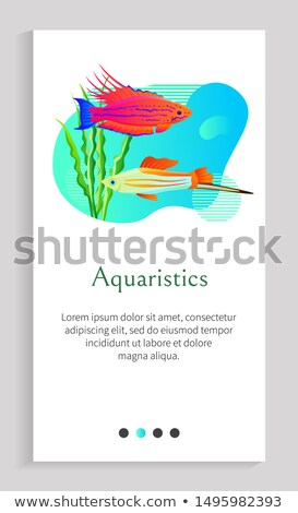 Fish Underwater Scape Set Vector Illustration Stock photo © robuart