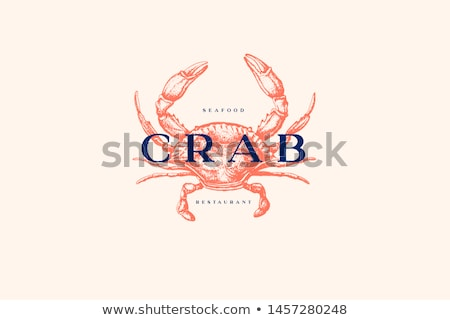 Shrimp and Crab Crustacean Vector Illustrations Stock photo © robuart
