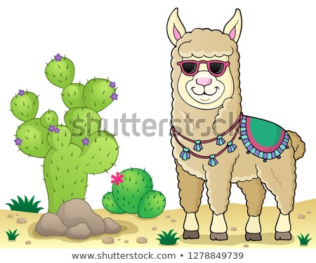 Llama with sunglasses theme image 3 Stock photo © clairev