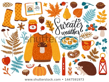 Pumpkin and Acorns Autumn Isolated Icons Vector Stock photo © robuart