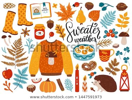 Dynia jesienią odizolowany ikona wektora Zdjęcia stock © robuart