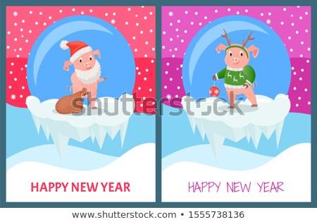 Feliz ano novo porco tricotado suéter imprimir Foto stock © robuart